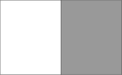 Blanc / gris clair