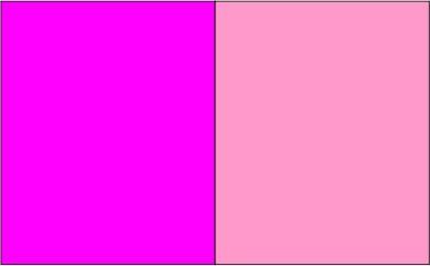 Fucshia / rose