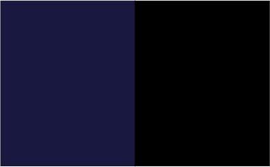 Bleu marine / Check