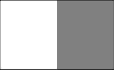Blanc / titanium