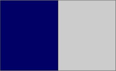 Bleu marine / gris
