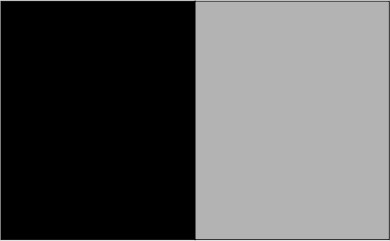 Noir / gris