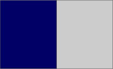 Bleu marine / gris clair
